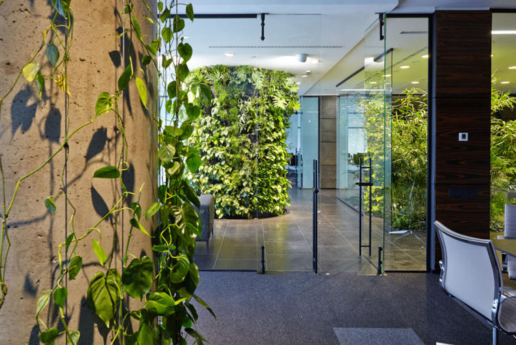 green-office2